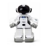 Silverlit Echo-Bot I/R 88308
