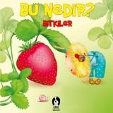 Bu Nedir? - Bitkiler  - Elif Tahmiscioğlu