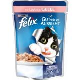 Felix Pouch Somonlu Yaş Kedi Maması 100 gr