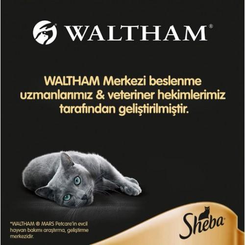 Sheba Pouch Somon Balıklı Kedi Yaş Mama 85 gr